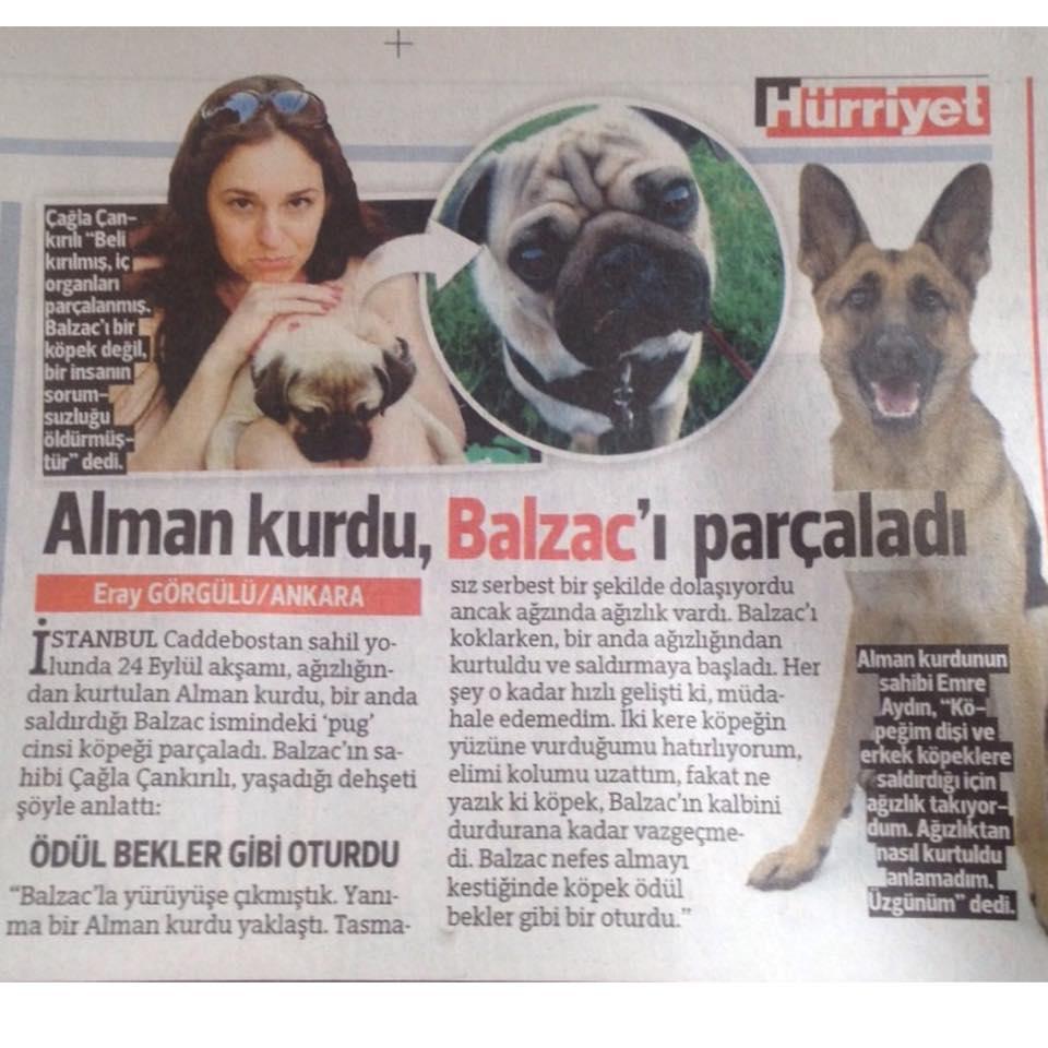balzac-haber