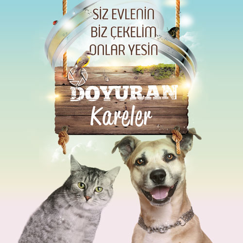 Doyuran-Kareler