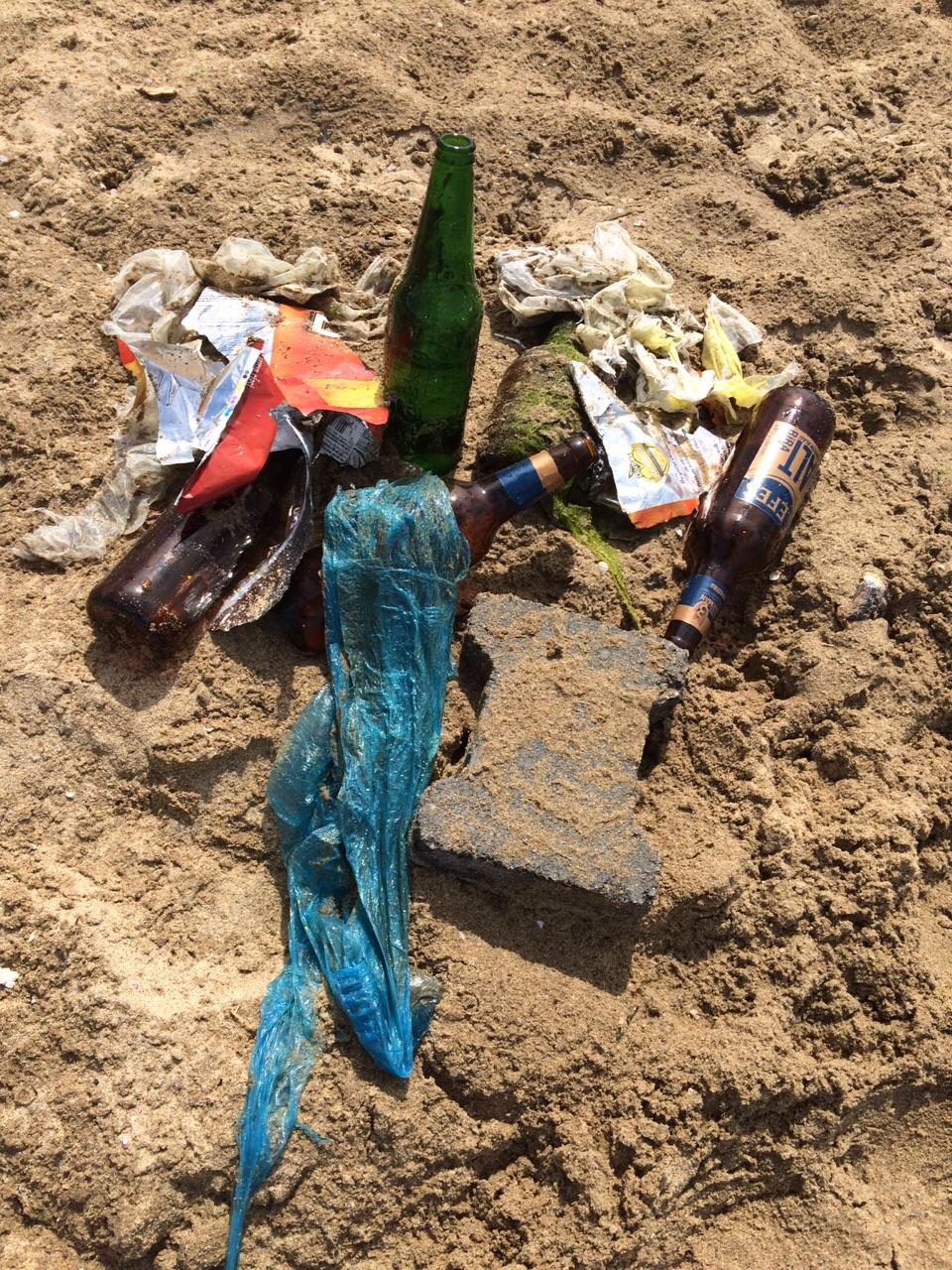 Raffy'nin denizden çıkardığı çöpler ©Patipedia