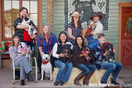 """Yıllar sonra yeni sahipleri ile tekrar buluşan """"Vick'in köpekleri"""" doğru eğitim yöntemleri ve sevgi ile yaraların sarılabileciğini kanıtlıyorlar."""